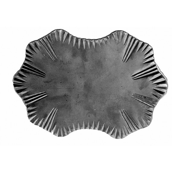 841/5 Placa de mascare pentru poarta din tabla forjata 210x290x4mm